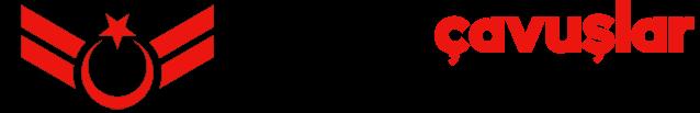 Uzman Çavuşlar - Uzman Erbaş - Sözleşmeli Er - Uzmanlar - Subaylar - Astsubaylar